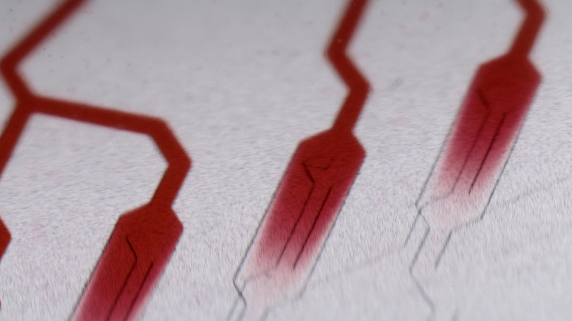 Ausschnitt aus dem Fraunhofer Recruitingspot, Mikroskopansicht von Zellen