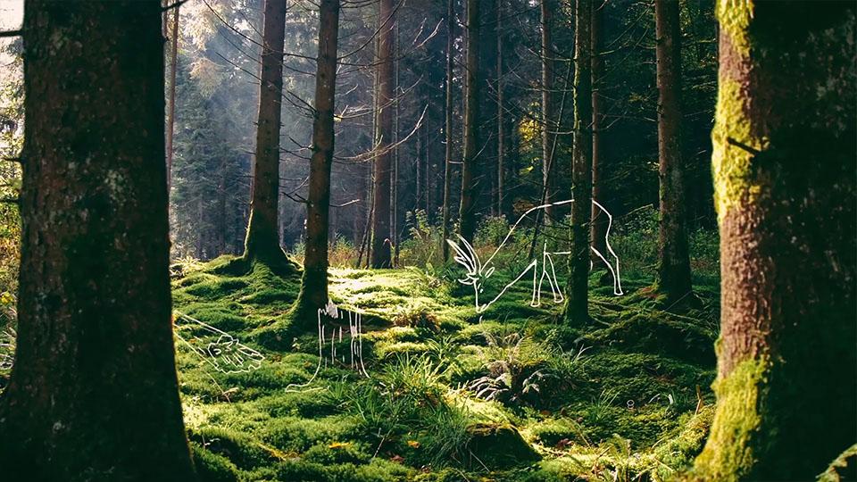 Ausschnitt aus dem NABU BW Imagefilm - Wald mit Sribble-Hirsch